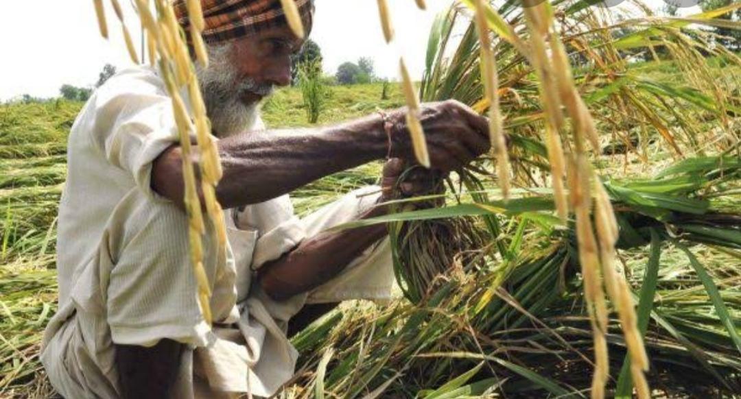 Photo of किसानों का संघर्ष और सरकार की बेरुखी